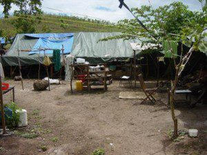 20090101_1090256124_wp_refugees_png_web2