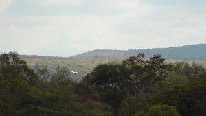 Zona del Cerro León. Territorio Ayoreo